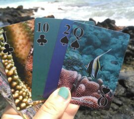 Scuba Tom playing cards